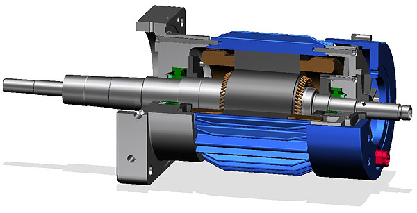 Customized Electric Motors